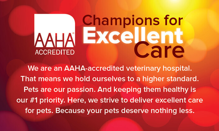 Committed to Excellence - We are very proud to be a member of the American Animal Hospital Association. AAHA accreditation means that our practice adheres to high standards in all areas, from quality medical care to exceptional management and facility conditions.